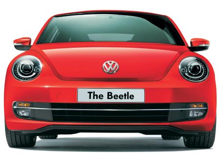 beetle_120215