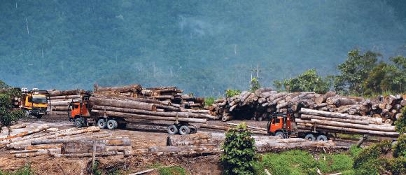 logging_36_1052