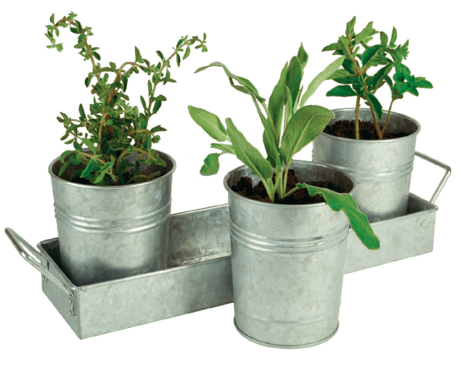 metal-planters_kitted-to-please_accents_haven78_theedgemarkets