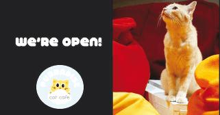 Purradise Pet Cafe