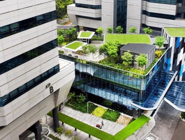 Google Asia Pacific is new tenant at Alexandra Technopark