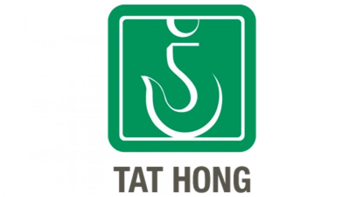 Tat Hong Holdings